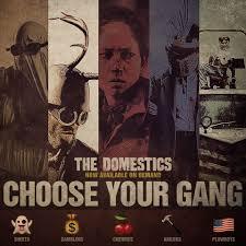 the domestics gangs